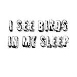 I see birds in my sleep