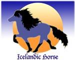 Blue Dun Icelandic horse