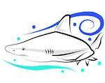 Sandbar Shark Lineart