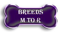 Breeds M to R