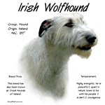 Irish Wolfhound (white)