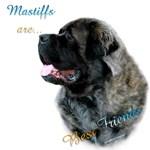 Mastiff Friend Fluffy