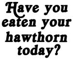 hawthorn today