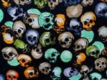 .stella's skulls.