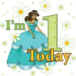 I'm 1 Black Princess First Birthday