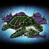 Sea Turtle art by Julie Oakes