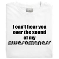My Awesomeness