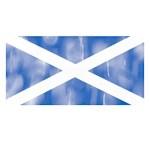 Aged Flag of Scotland