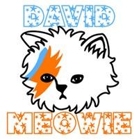 David Meowie