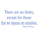 Fringe Walter Bishop quote:  No Limits