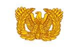 Warrant Officer Symbol