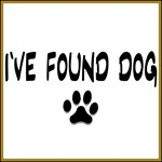 I've Found Dog