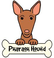 Pharaoh Hound Cartoon T-Shirts and Gifts