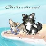 Beachy Chihuahuas