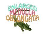 Enlarged Medulla Oblongata