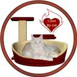 Cat #12