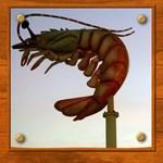 Jumbo Shrimp!