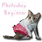 Photoshop Beginner