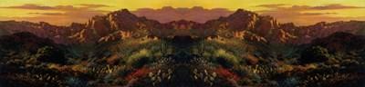 Arizona Desert canvas-2b