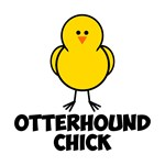 Otterhound Chick