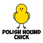 Polish Hound Chick
