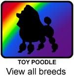 Rainbow Dog Breeds