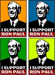 I Support Ron Paul