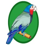 Parrot T-shirts and Gifts