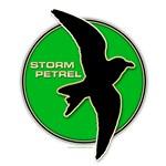 Storm Petrel