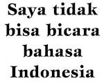 I don't speak Indonesian