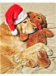 Golden Retriever Christmas Teddy