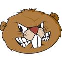 Beaver Face
