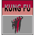 Kung Fu T-shirt