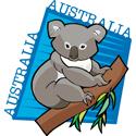 Australia Koala Bear