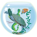 Turtle In A Fishbowl
