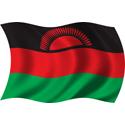 Wavy Malawi Flag