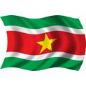 Wavy Suriname Flag