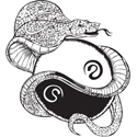 Yin Yang Snake