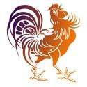 Rooster Merchandise