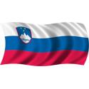 Wavy Slovenia Flag