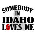 Somebody In Idaho T-shirt