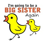 Chicks Big Secret Big Sister Again