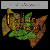 Fall in Virginia