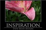 INSPIRATION23