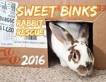 Sweet Binks Rabbit Rescue 2016 Calendars