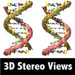 3D Stereoscopic