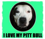 LOVE MY PIT BULL