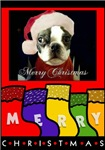 MERRY CHRISTMAS BOSTON TERRIER/XMAS TREE (BACK) LO