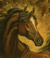 Horse Portrait, 'Noble Steed' by Marc Brinkerhoff