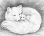 Arctic Fox Family by Marc Brinkerhoff